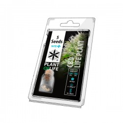 CBD LIFE PLANT MEDICAL 5 SEEDS