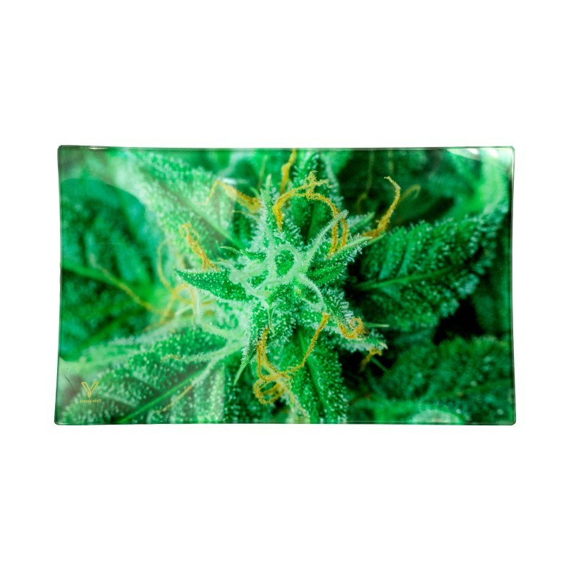 large size glass tray for rolling spliffs and joints. Design perfect for head shops and grow shops