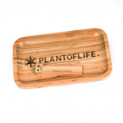 TRAY BAMBOO MEDIUM LOGO...